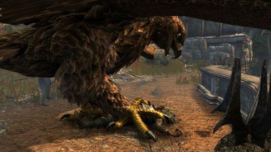 Из-за леса, из-за гор, прилетел в лицо орёл.