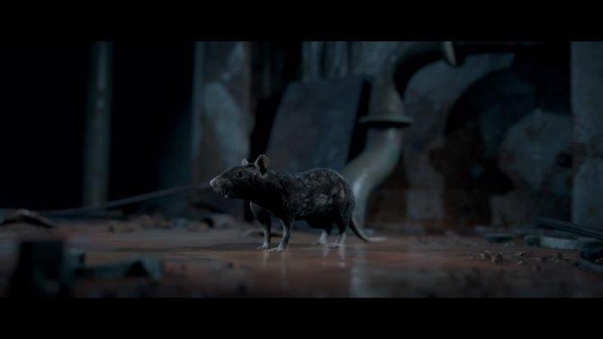 Когда чувствуешь, что в твоей компании завелась крыса.