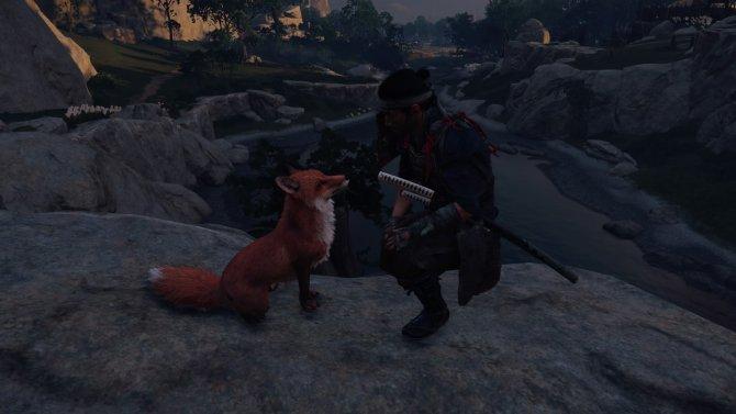 После похода к святилищу Инари лисичку можно погладить.