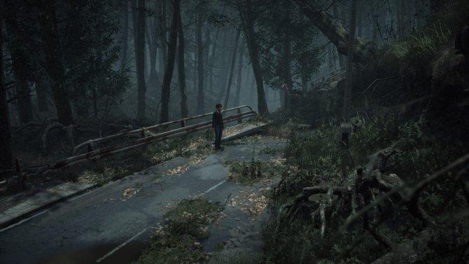 Мрачные пейзажи игра демонстрирует на регулярной основе.